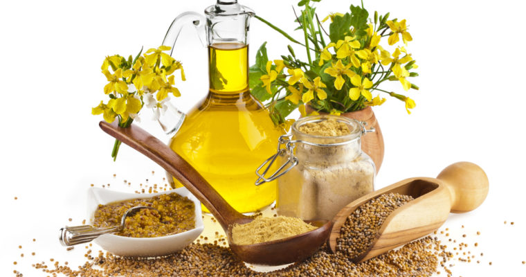 MUSTARD OIL- THE OIL WITH UNLIMITED BENEFITS